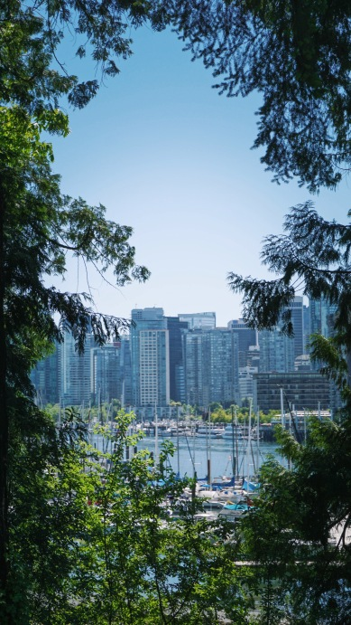 Views From Stanley Park